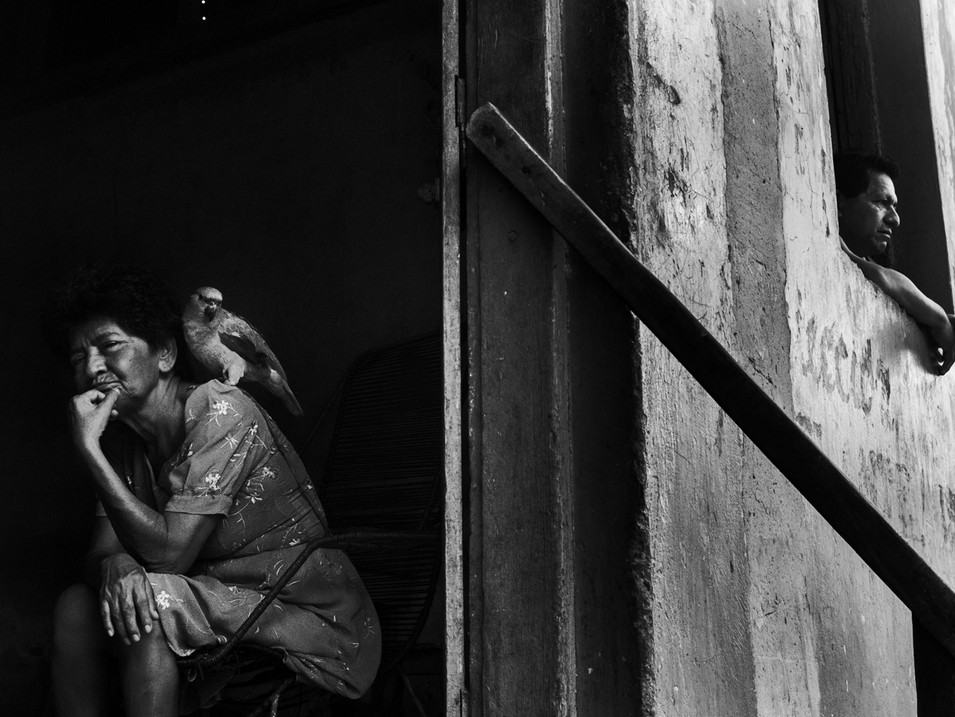 In March, 2015, an old resident, Laura, sits on her front door with a parrot on her shoulder, while her son watches the daily activities from the window, in the village of Pebas, Amazon region. Laura is not from the indigenous communities along the river. During the 70's, she came along with her husband looking for work and never left, creating her own family among the native tribes. As an elderly woman, her daily routine consists in sitting in her door and watch the local residents walk by.