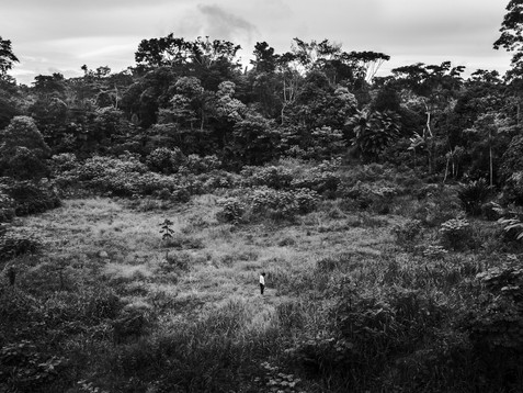 In October, 2018, Aladino, a native Bora shaman, stands alone in the middle of a devastated area in the Amazon region. The changed scenery symbolizes the actual times for him. Since his near-death experience, he became more of an introspective person and usually walks alone thinking about the problems he is facing. A real shaman need to be in contact with the spirits all the time, it is the only way to follow through any disadvantages in life.