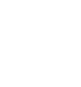 Wesuranceio logo A-white.png