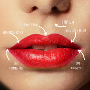 Mastering Lips.png