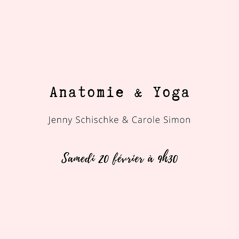 Anatomie et Yoga