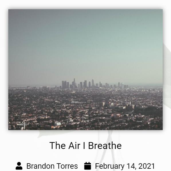 "A Photo shows a skyline behind a hazy sky, text reads ""The Air I Breathe Brandon Torres February 14,2021"""