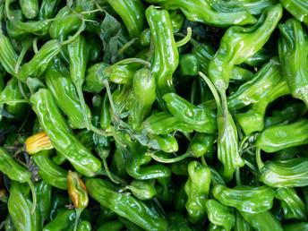 Favorite Recipes: Shishito Peppers with Healthy Aioli à la Gwyneth Paltrow