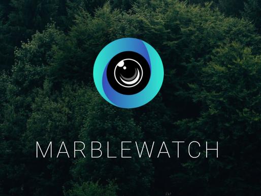 Meet Gen Z: MarbleWatch
