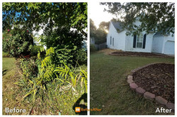 Before & After --- nice and clean