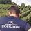 Thumbnail: Champagne Bochet-Lemoine - Les Grimprés - DOC Champagne