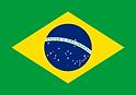 Portraits d'artisans d'art | Brésil