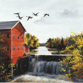 Autumn on dells mill