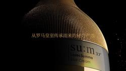 sum37_LosecSumma