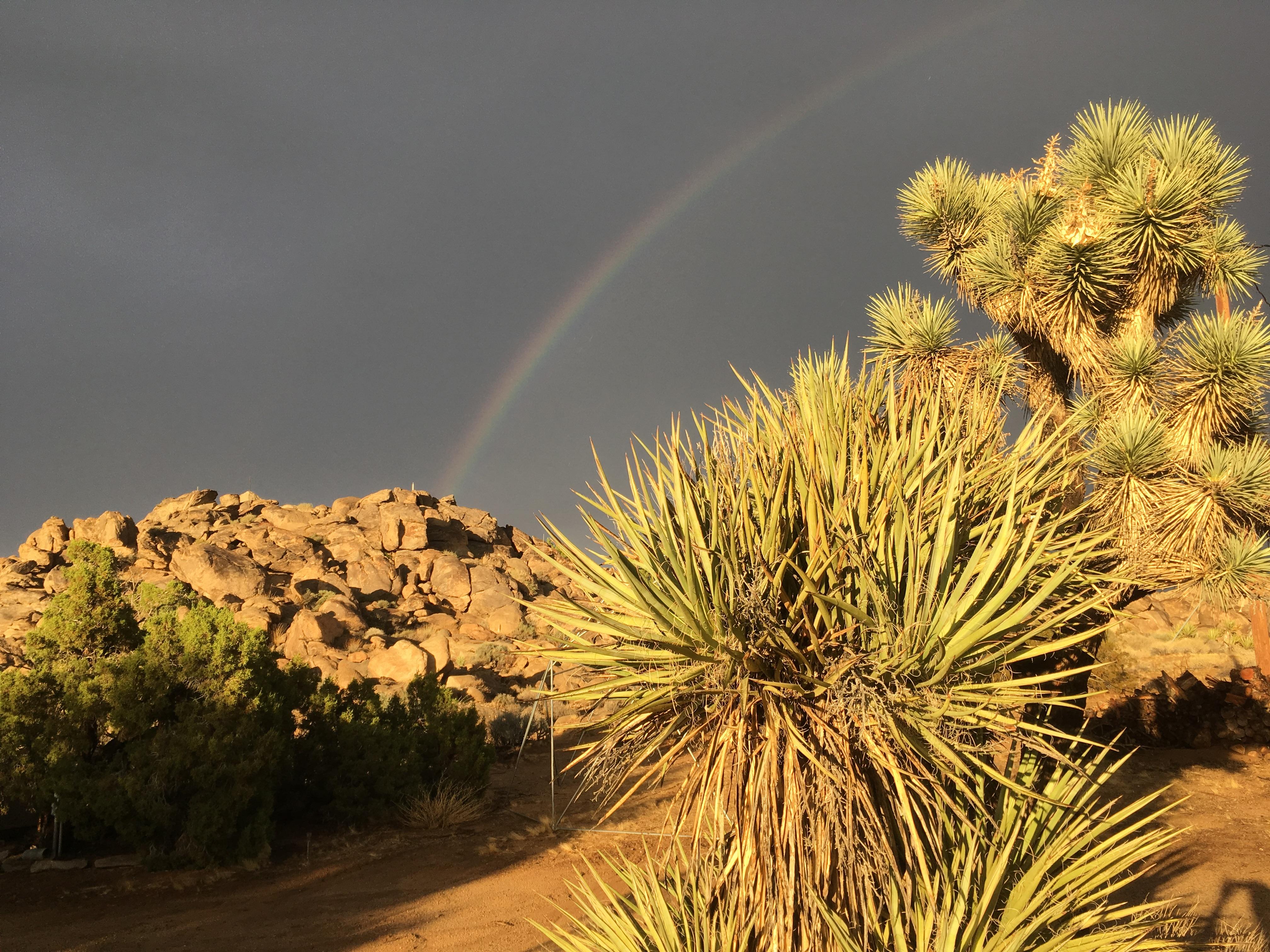 Rainbow's Edge