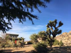 Rancho Rockotillo cabin
