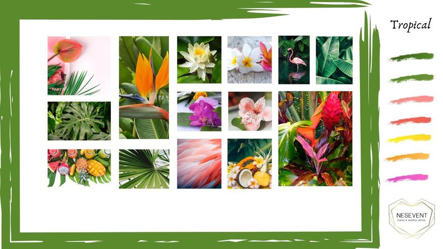 Moodboard Tropical 1.jpg