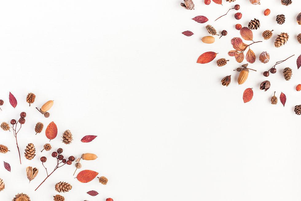 Autumn composition. Frame made of autumn