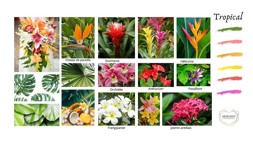 fleurs Tropicales.jpg