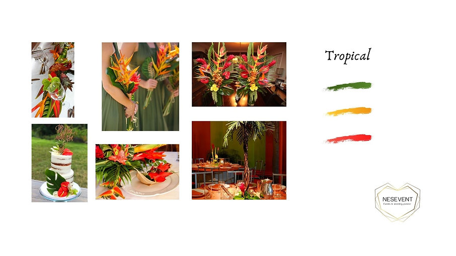 TROPICAL 5.jpg