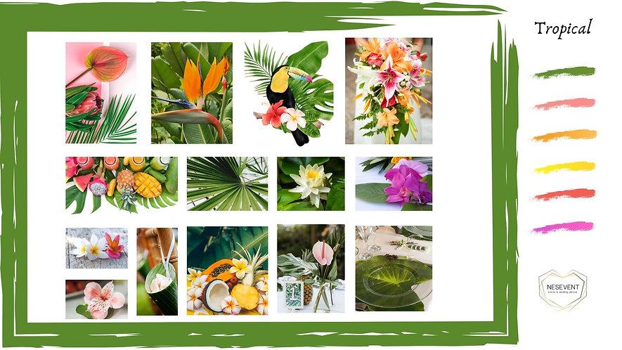 Moodboard Tropical.jpg
