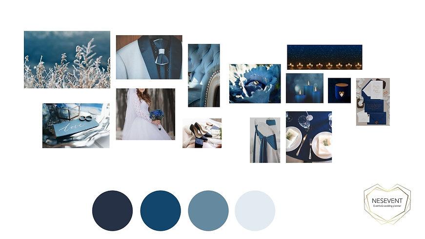 Planche 14 bleue (1).jpg