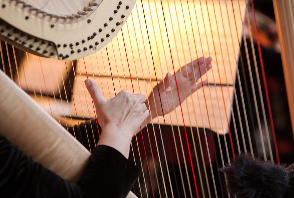 Cérémonie mariage Harpiste
