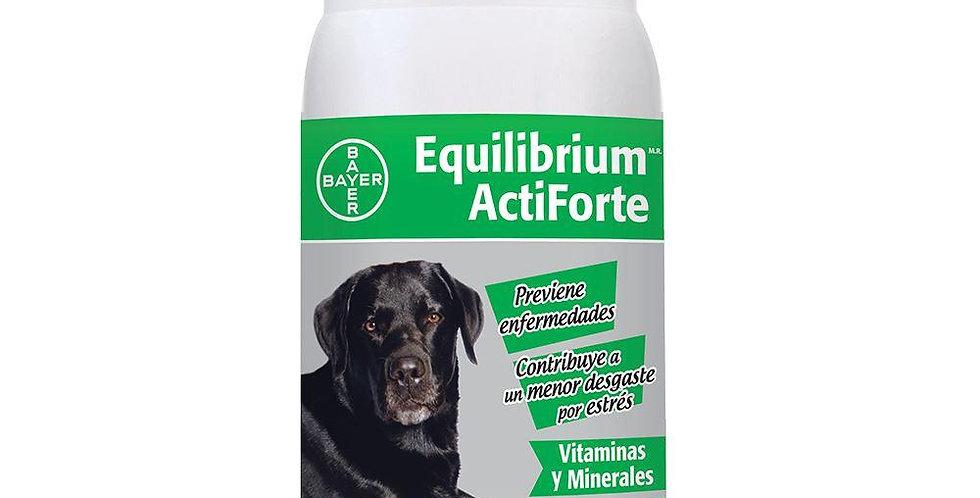 Equilibrium Actiforte