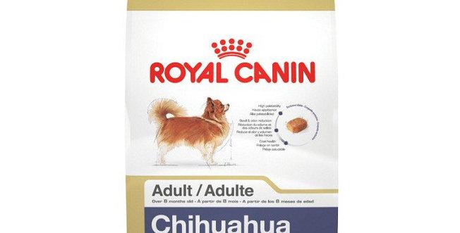 BHN Chihuahua Adulto