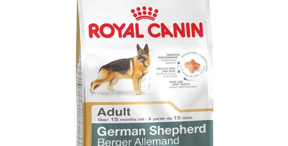 BHN German Shepherd