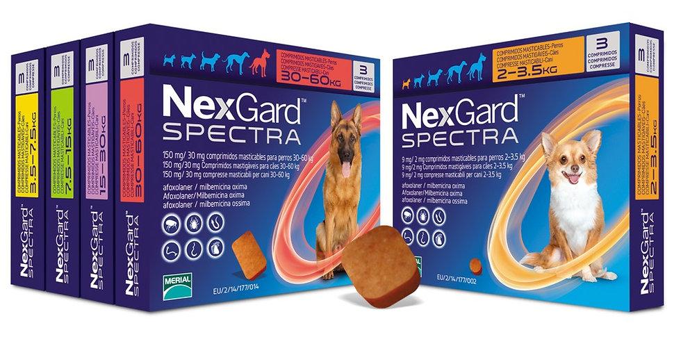 Nexgard Spectra 1 tableta (diferentes presentaciones)