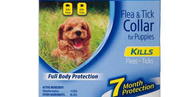 Collar Hartz® UltraGuard™ 2 en 1 para cachorros