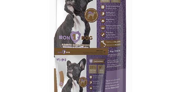 Iron Dog Cachorro Razas Pequeñas