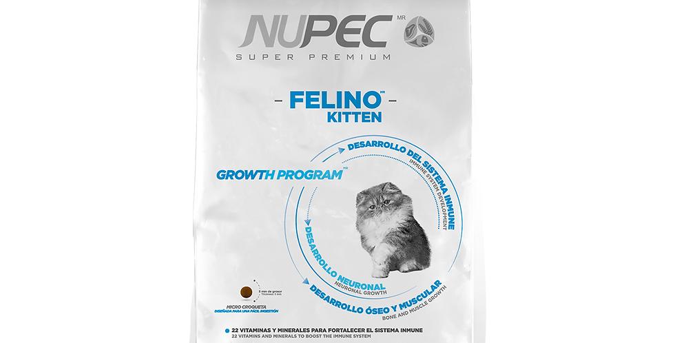 Nupec Felino Kitten