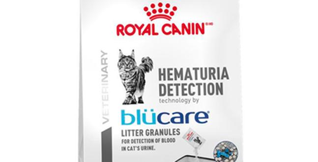 Hematuria Detection