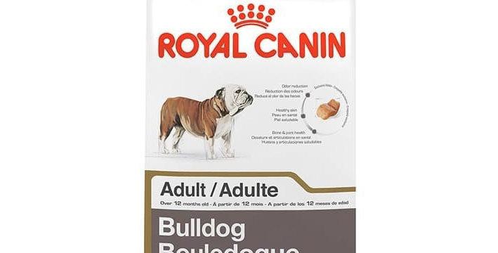 BHN Bulldog