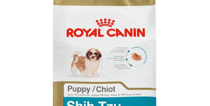 BHN Shih-Tzu Puppy
