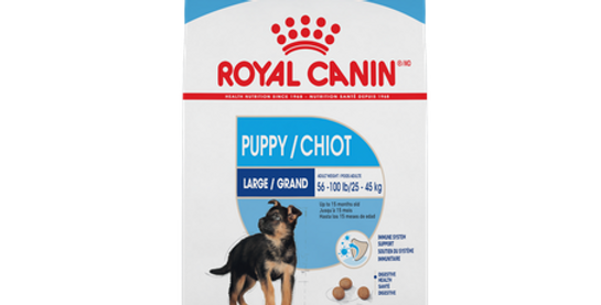 Royal Canin Large/Maxi Puppy