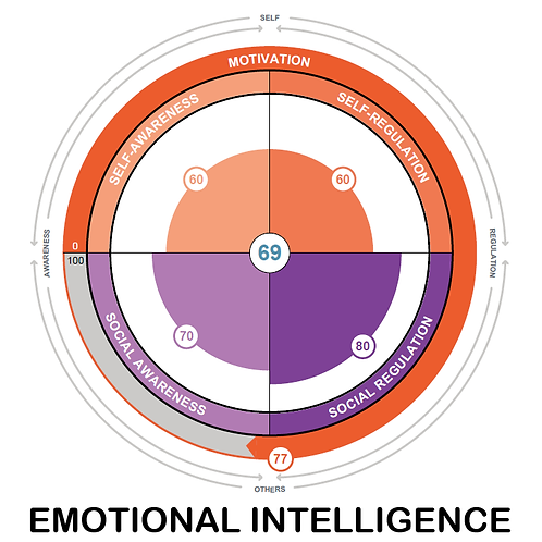 Emotional Intelligence (EQ) Test