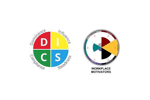 DISC & Motivators Profile Test