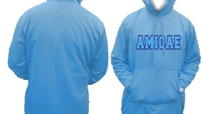 Amicae NEW Hoodie Dress (PREORDER)