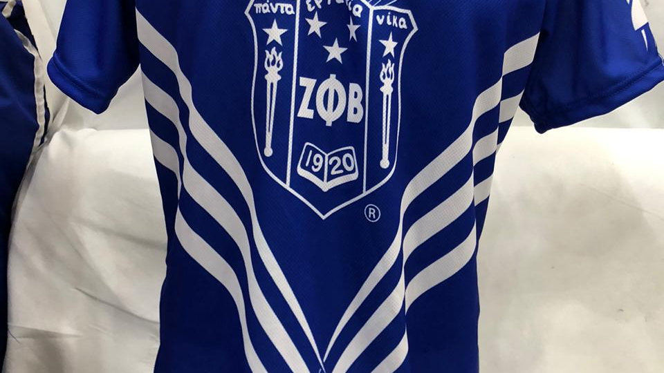 Zeta New Shield Dove Jersey