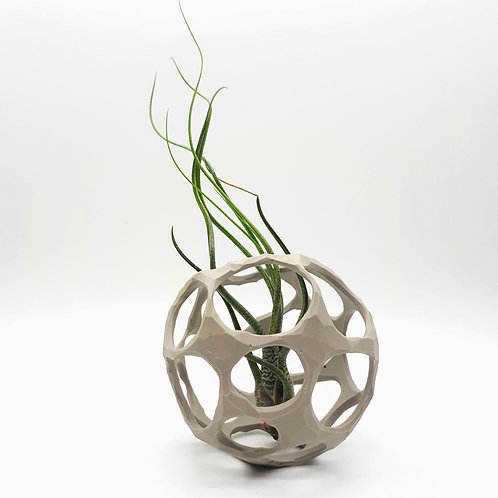 Grey Carved Air Plant Nest