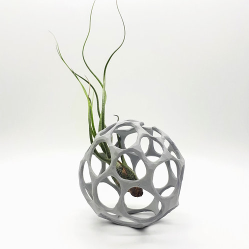 Carved Air Plant Nest