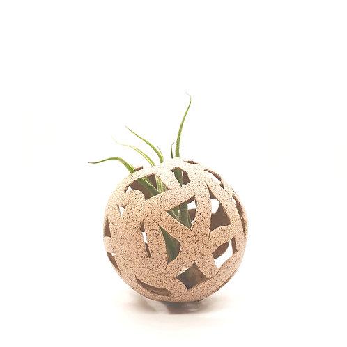 Sandy Nest (air planter)