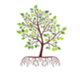 tree-with-roots-and-green-leaves-vector-