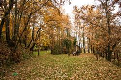 Parque do Convento - Gardunha