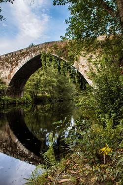 Ponte de Vilela, Arvos de Valdevez