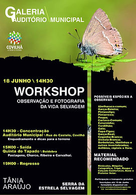 2016-06 Cartaz Workshop.jpg