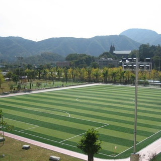 Dual Colored Football Pitch