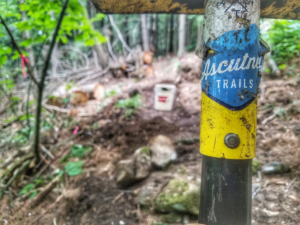 New construction on Lou's Loop Trail