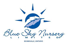 sky blue nursery.jpg