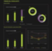 financial highlights chart.png