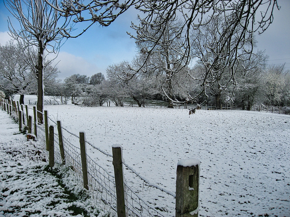 Country scene with winter snow - Great Wyrley