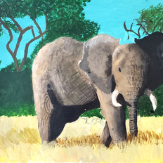 ELEPHANT IN THE GRASS